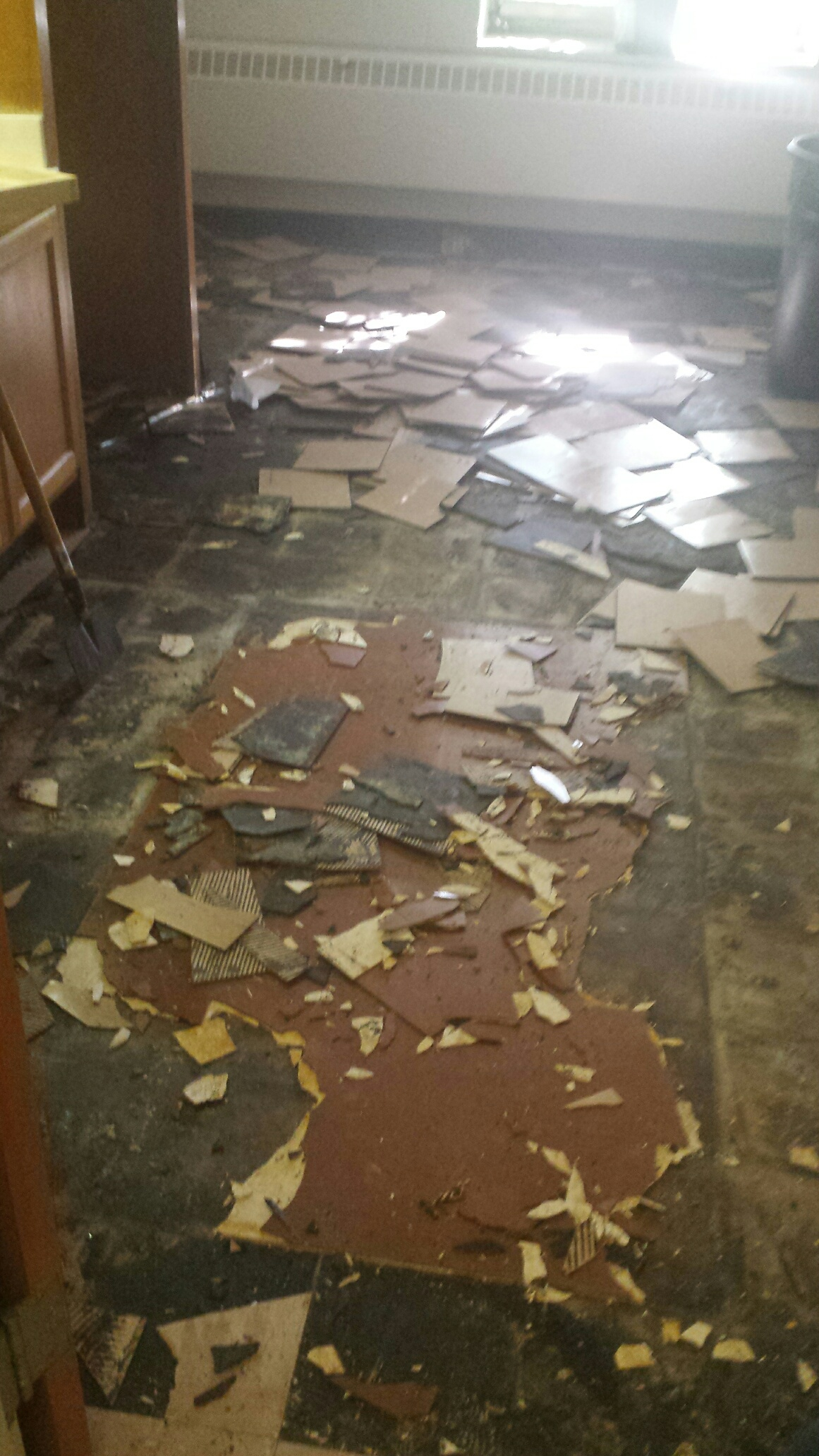 Asbestos environmental health and safety services virginia tech floor tile removal dailygadgetfo Image collections